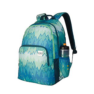Wildcraft Wiki 4 Ombre Backpack - Green